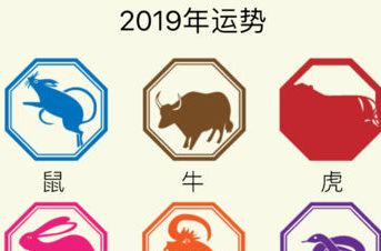 满月指什么动物_今年刚满月是什么生肖2019