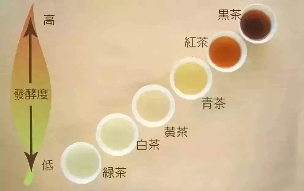 茶叶公司简介范文大全_茶叶公司简介怎么写范文