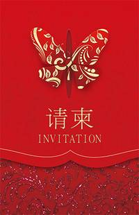 王二妮在北京结婚视频,王二妮结婚视频